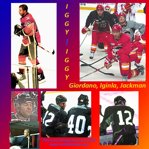 Jarome Iginla Collage of Pictures by Christina Johnson